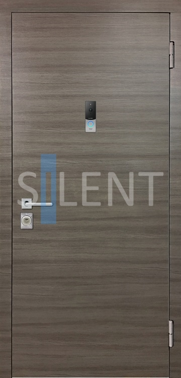 SILENT SMART VISION Out